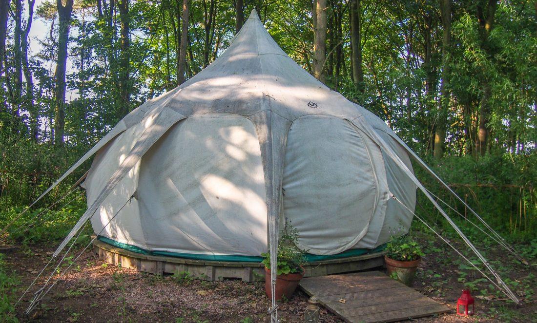 Snowdrop tent St Andrews