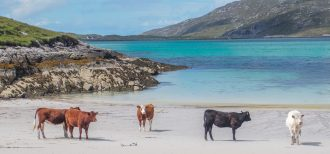 The Isle of Vatersay